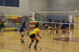 Collins Volleyball Team Is on a Roll
