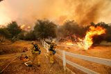 At Least 5 People Dead in Deadly California Wildfires