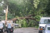 Tornado-Like Weather in Chicago Leaves Many Without Power