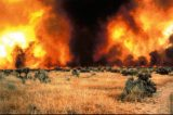 Officials Warn Against Fireworks Due to Drought and Extreme Fire Danger